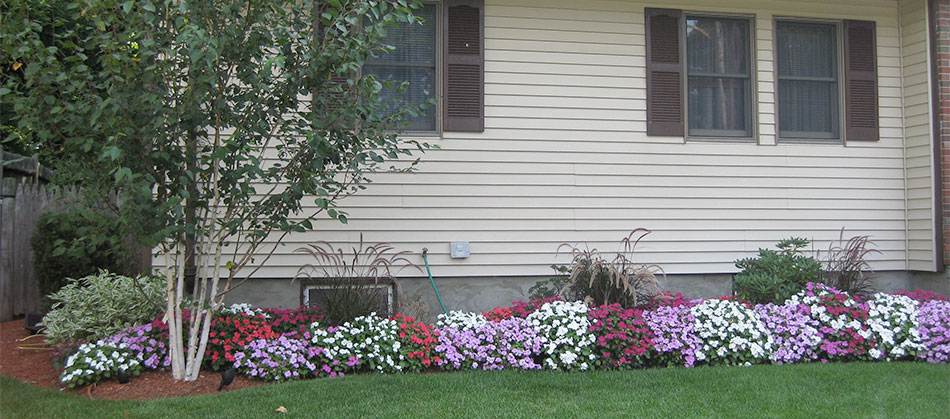 Landscapers Dedham MA